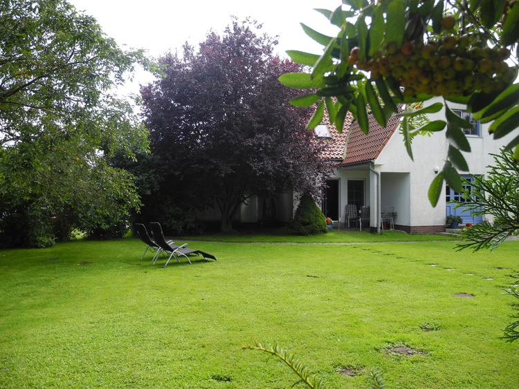 Gartenansicht auf die Terrasse