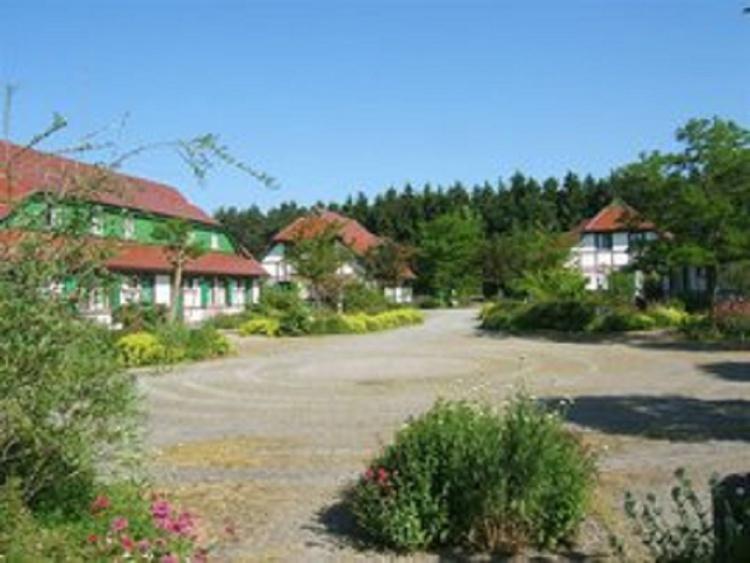 Blick in den Weiler C. Die FeWo C 23, befindet sich im Haus Bildmitte, links am Kiefernwald.