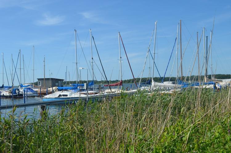 Ribnitzer Hafen