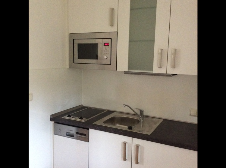 Küchenzeile mit Geschirrspüler u. Mikrowelle (Haushälfte 2)