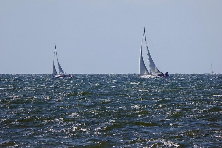 MOLA-Boote vor Hiddensee