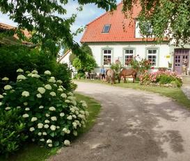 Ferienhaus Insel Poel
