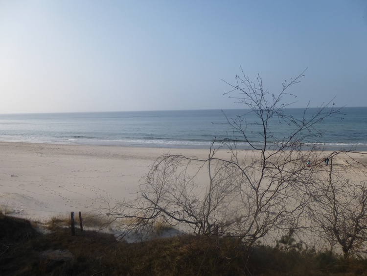Weitere 3 Ferienwohnungen in Juliusruh finden Sie auf unserer Homepage