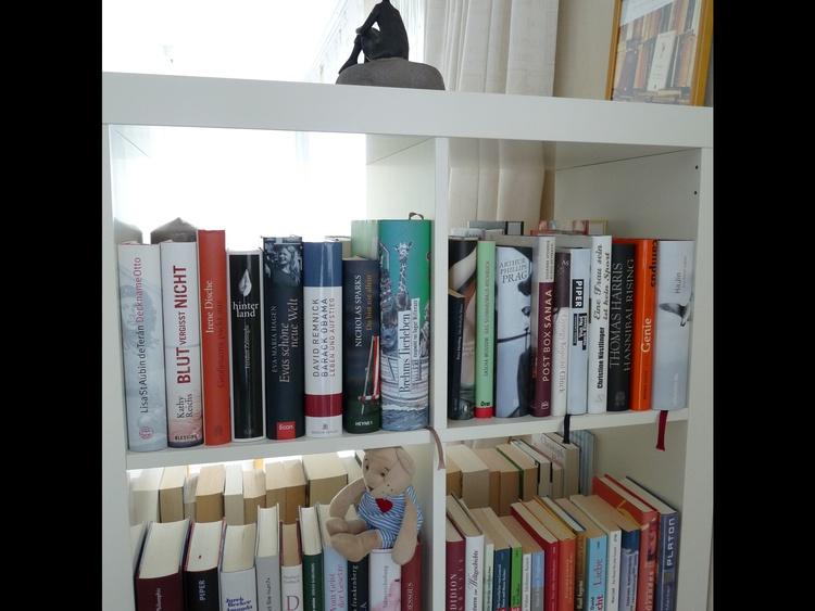 Hausbibliothek mit insg. über 300 Büchern