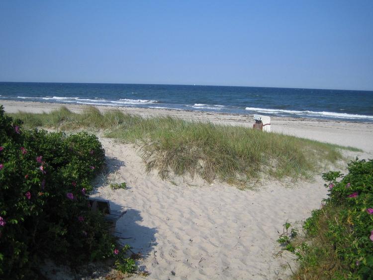 Das könnte IHR Strandkorb sein!