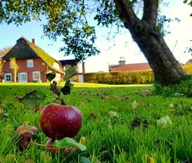 Ferienwohnung Kronsgaard