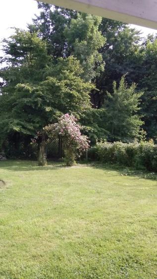 Rasenfläche hinterm Haus