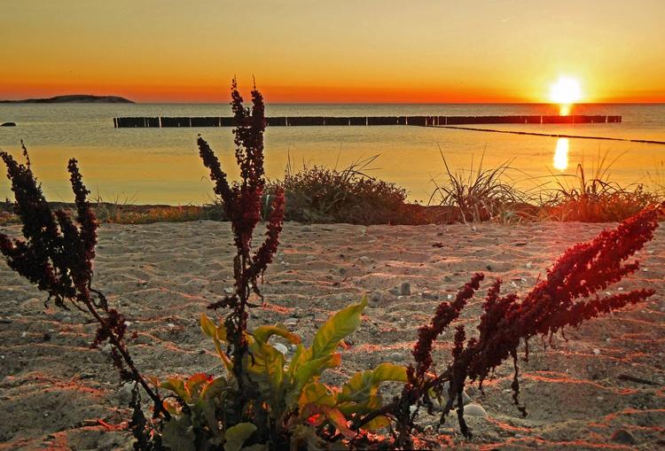 Sonnenuntergänge  - in Dranske vom Feinsten!