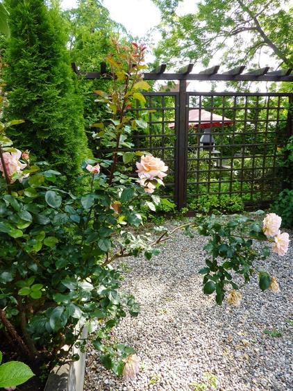 Rosengarten mit Blick zum Grillplatz im vorderen Bereich des Hauses