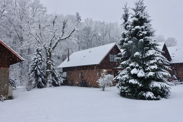 Jahreszeit Winter