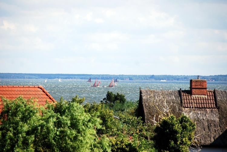 Blick aus der FeWo zur Zeesbootregatta auf dem Saaler Bodden
