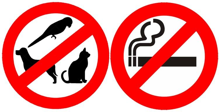 Allergikergeeignete Unterkunft  -   Haustiere sowie Rauchen im Haus sind deshalb unerwünscht.