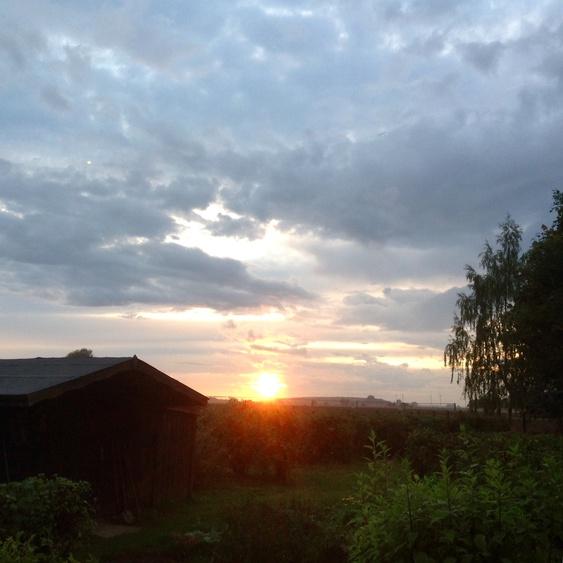 Genießen Sie diesen Sonnenuntergang