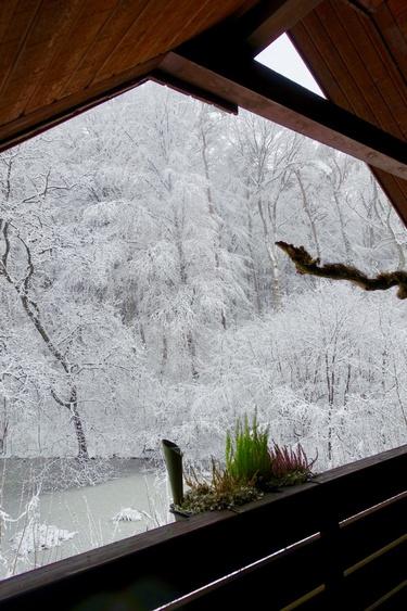 traumhafter Blick auf den Winterwald
