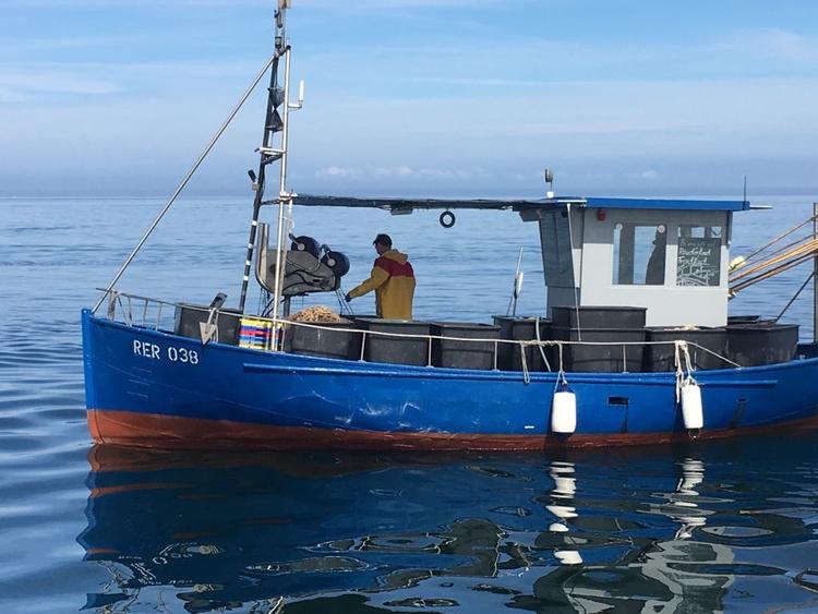 Eigener Fischereibetrieb mit Frisch-und Räucherfisch