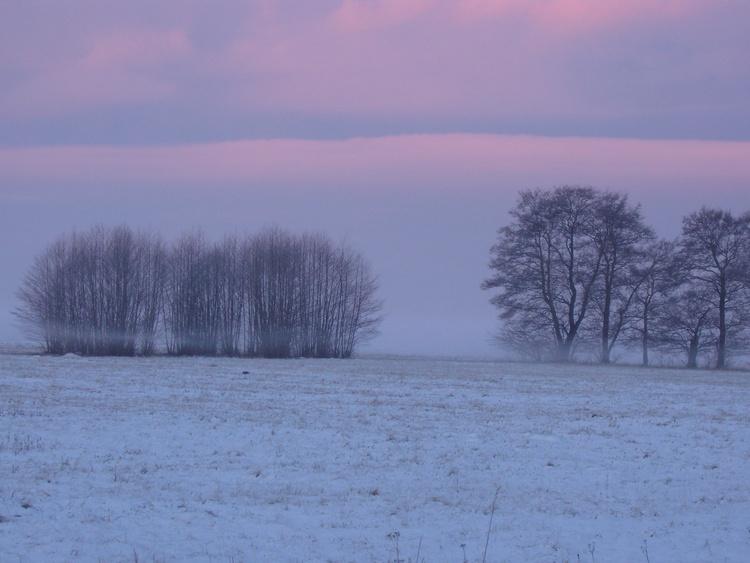 "Wiesenblick ""Wintermorgen"""